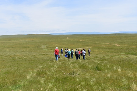 Citizen scientists head to Merced Vernal Pools and Grassland Reserve sites.
