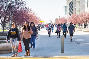 UC Merced's applications from California high school seniors reflect the campus's diversity.