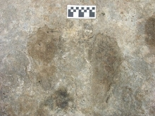 Footprints and handprints helped the researchers date the activities of early settlers.