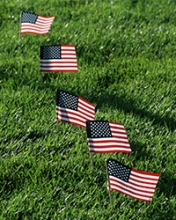 Five small flags of the United States and planted in green grass.