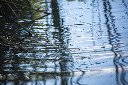 Image of rippling water at the UC Merced campus.