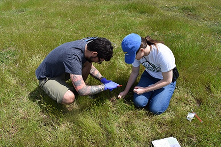 Two citizen scientists collect eDNA from the nature reserve.
