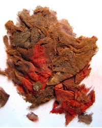 Cloth remains found by Professor Mark Aldenderfer.