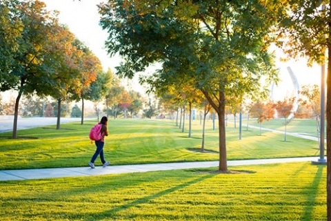 Green lawns on campus don't mean the university is ignoring the drought.
