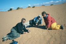 Professor Marilyn Fogel, right, and her colleagues search for Genyornis eggshells on an Australian beach dubbed 'Geny Heaven.'